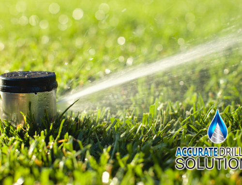 Irrigation 101: Everything You Need To Know About Irrigation