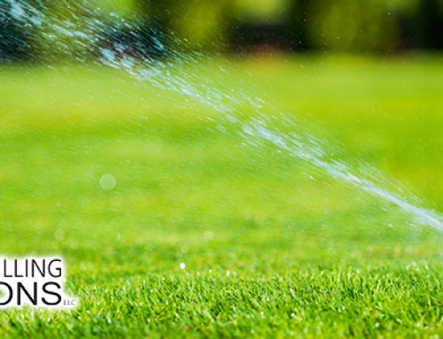 What Sprinkler Head Is Right For You?