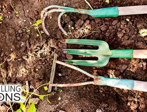 Garden Irrigation: An Introduction