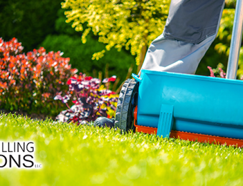 Complete Lawn Care for Well Owners